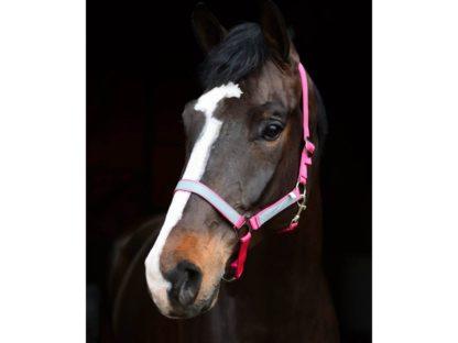 10585863 jacson grimma med reflexer ponny rosa