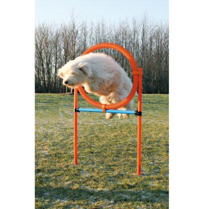 423208 trixie agility hoppring plast 78x65x115cm 3 wpp1588327081631