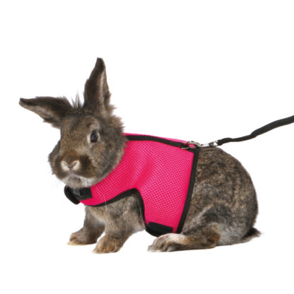 4261514 softsele koppel stor kanin rosa