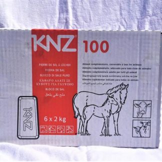 50234 knz 100 saltsten basic 2kg