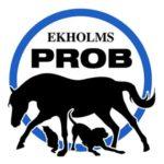 ekholms prob logo wpp1590665875965