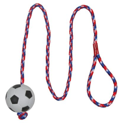 423307 trixie fotboll pa rep 5x100cm wpp1591026026860