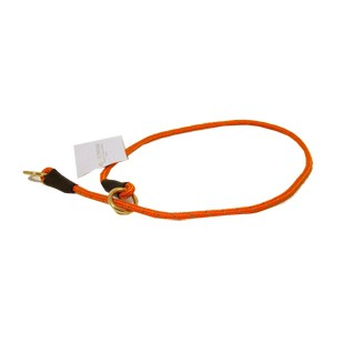 petcare dressyrhalsband orange helstryp dressyrstryp wpp1591807816570