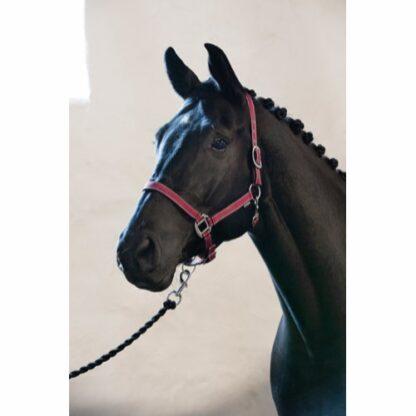 41030544 horse guard grimma rio nylon rod vinrod silver