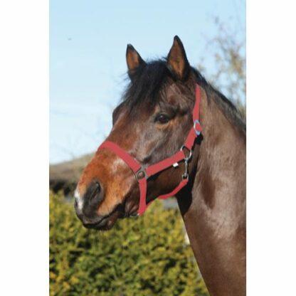 41211004 horse guard grimma nylon rod