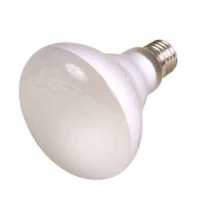 4276004 trixie terrarielampa varmalampa spot 150w wpp1607333842344
