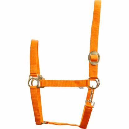 41213019 horse guard grimma nylon orange
