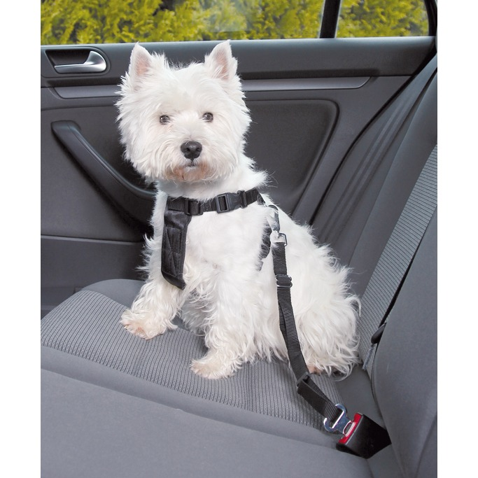 Trixie Bilbälte Hund Svart S 30-70cm
