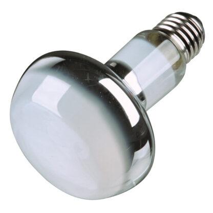 4276002 trixie terrariumlampa spot 75w wpp1624102560523